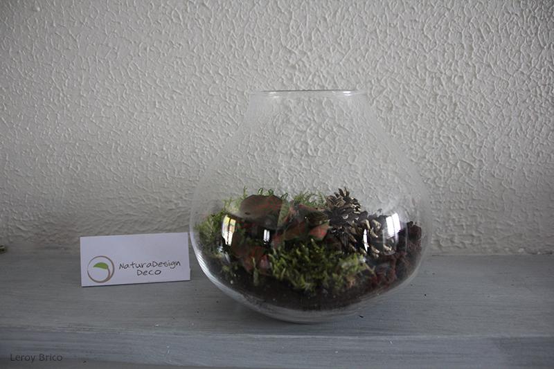 Terrarium homemade